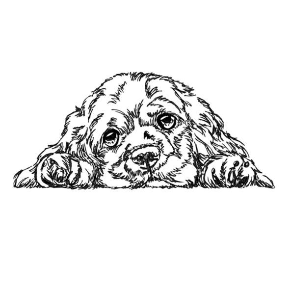 Hund Cocker Spaniel - StickZebra