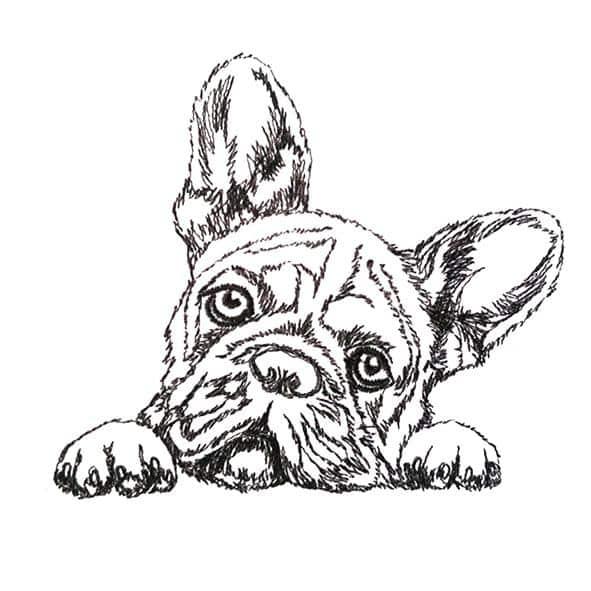 Hund Bulldogge - StickZebra