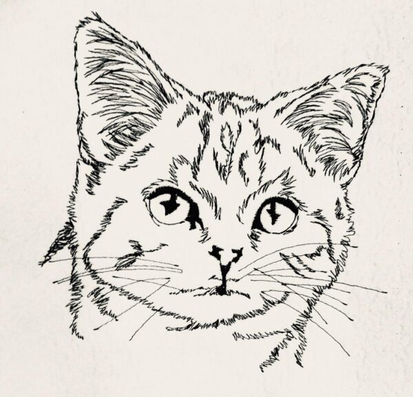 Katze Doodle Stickdatei - StickZebra